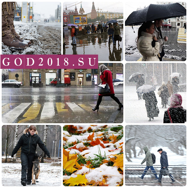 Weather in Moscow in November 2018. Forecast